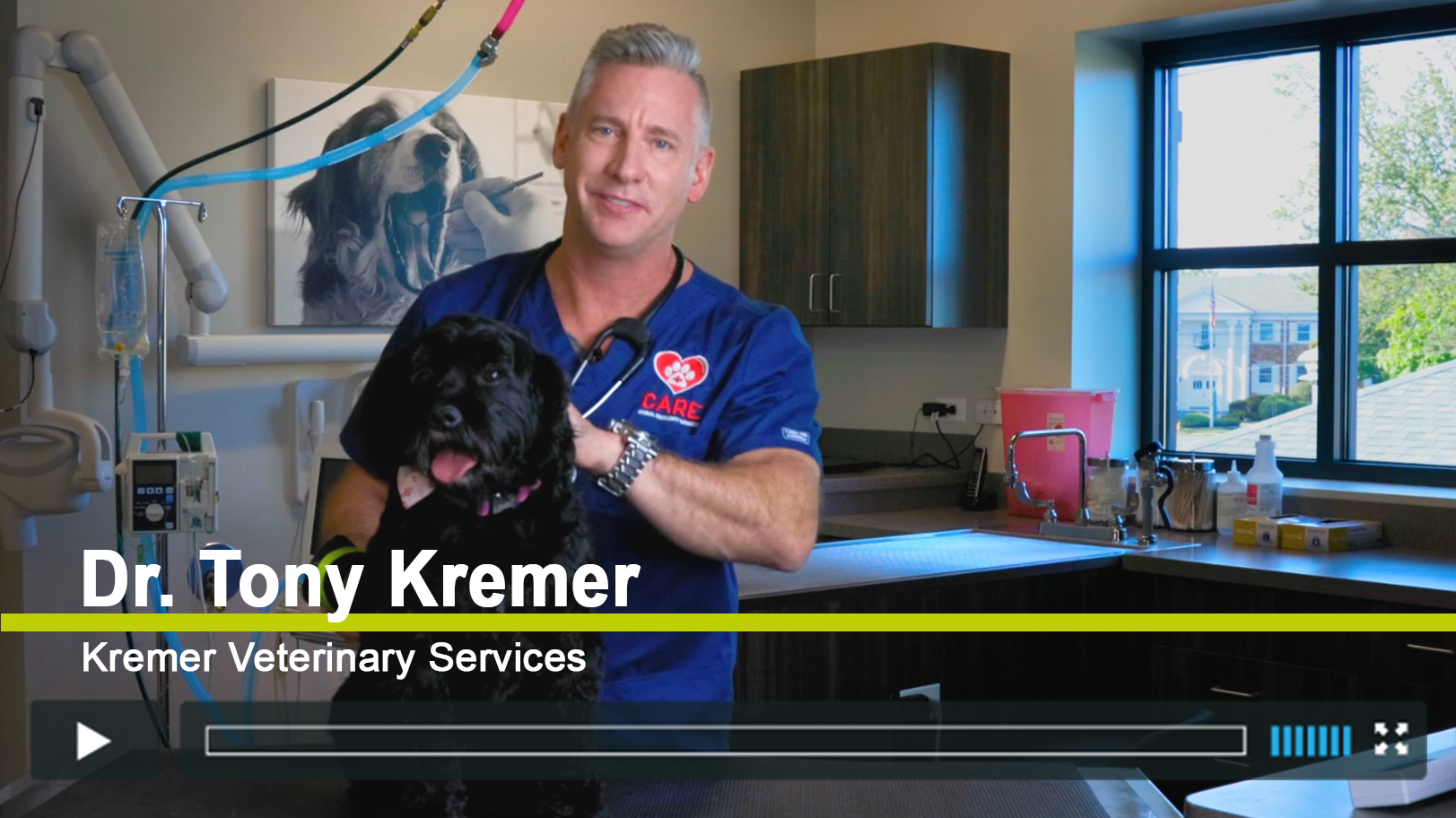 Dr Tony Kremer Presents the Dog Med Laser
