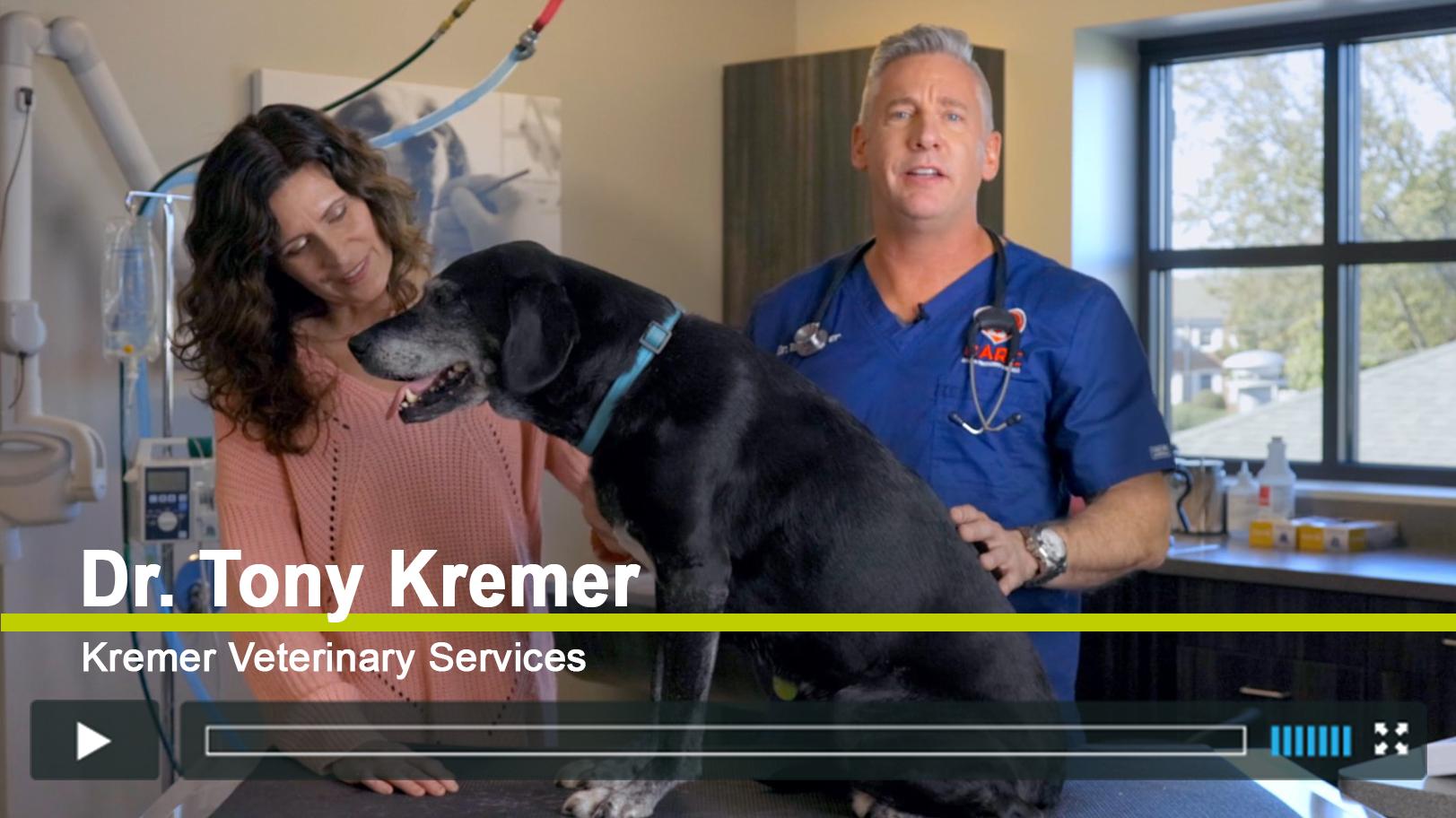 Vimeo - Dr Tony Kremer - Chronic Pain and Arthritis in Older Dogs